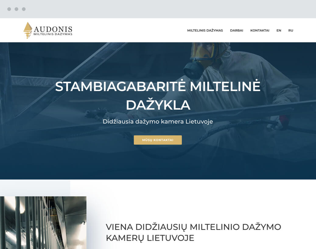 Audonis.lt internetine svetaine
